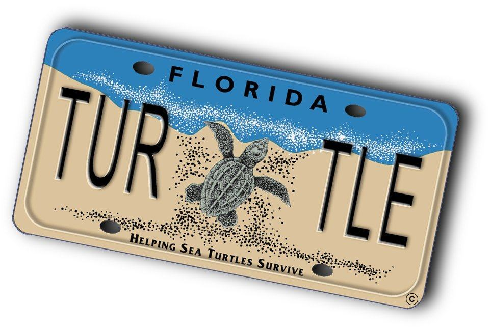 SeaTurtleLicensePlate_Tilted